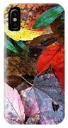 Colors Of The Fall IPhone Case