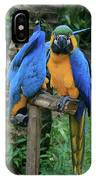 Colourful Macaw Pohakumoa Maui Hawaii IPhone Case