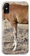 Colt 015 IPhone Case