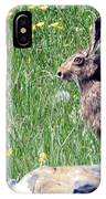 Common Hare IPhone Case