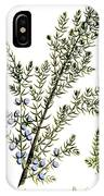 Common Juniper Alchemy Plant IPhone Case