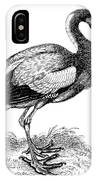 Common Stork IPhone Case