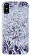 Cool Sunset Essence Of Winter IPhone Case