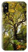 Coole Park Tree Galway Ireland IPhone Case