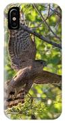 Cooper's Hawk In Early Morning Light IPhone Case