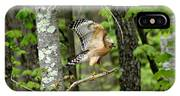 Coopers Hawk In New Hampshire IPhone Case