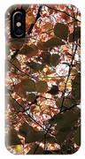 Copper Beech IPhone Case