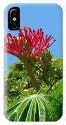 Coral Bush Jatropha Multifida With Flower And Fruit IPhone Case