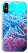 Coral Candy IPhone Case
