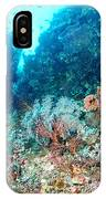 Coral Pyramid IPhone Case