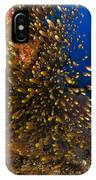 Coral Reef And Diver  IPhone Case