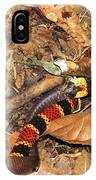 Coral Snake Snack IPhone Case