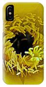 Core Of A Yellow Cactus Flower At Pilgrim Place In Claremont-california IPhone Case
