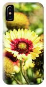 Coreopsis Tickseed IPhone Case