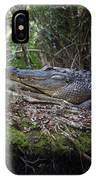 Corkscrew Swamp - Really Big Alligator IPhone Case