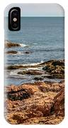 Cormorants And Seagulls Resting IPhone Case