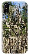 Corn Stalks Drying IPhone Case