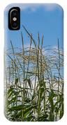 Corn Tassels In The Sky IPhone Case