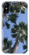 Corner Palms IPhone Case