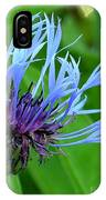 Cornflower Centaurea Montana IPhone Case