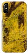 Cottonwood Fall Foliage Colors Abstract IPhone Case