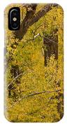 Cottonwood Fall Foliage Colors IPhone Case