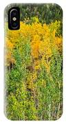 Cottonwood Pass Gold Viii IPhone Case