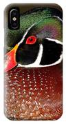 Courtship Colors Of A Wood Duck Drake IPhone Case