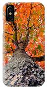Covered In Fall IPhone Case