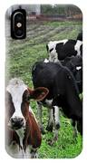 Cow Line Up IPhone Case