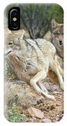 Coyote Chase 4189-022617-1cr IPhone Case by Tam Ryan
