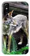 Coyote In Mid Stream IPhone Case
