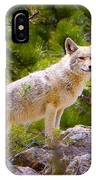 Coyote In The Rocky Mountain National Park IPhone Case