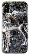 Coyote Waits IPhone Case