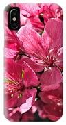 Crab Apple Blossoms 04302015-1 IPhone Case