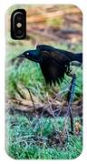Grackle In The Morning  IPhone Case