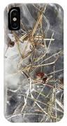 Crackling Ice II IPhone Case