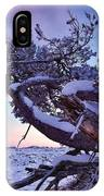 Craters Of The Moon IPhone Case