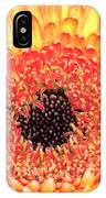Creation Of A Masterpiece IPhone Case