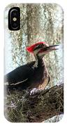 Crimson Highlights IPhone Case