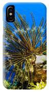 Crinoid At Pakin Atoll2 IPhone Case