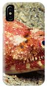 Crocodile Snake Eel IPhone Case