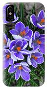 Crocus 6675 IPhone Case
