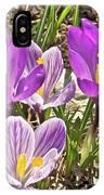 Crocuses 4 IPhone Case