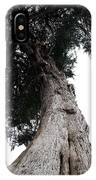 Crone Tree IPhone Case