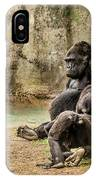Cross River Pregnant Gorilla And Children IPhone Case