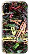 Croton 1 IPhone Case