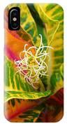 Croton Leaves IPhone Case