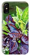 Crotons 2 IPhone Case