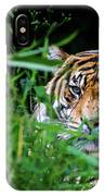 Crouching Tiger Hidden Cameraman IPhone Case